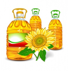 sunflower oil vector image vector image