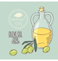 Olive oil carafe with olive branch hand drawn vector