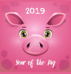 2019 year of the pig new year greeting card with vector image