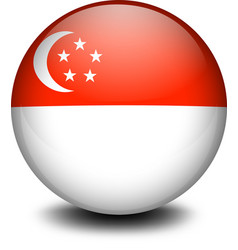 A ball with the flag of Singapore vector image