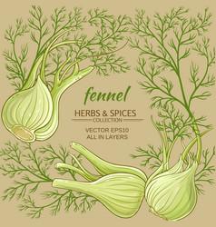 fennel frame vector image
