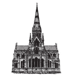 Gothic architecture - salisbury cathedral vector