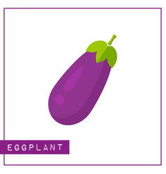 isolated violet eggplant memory training card vector image