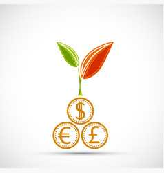 plant with leaves growing from coins vector image