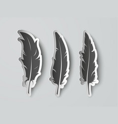 set isolated paper feathers with shadows vector image