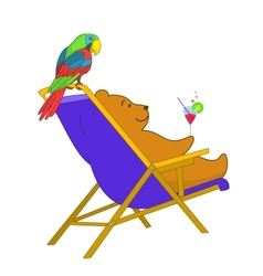 Teddy bear and parrot vector image