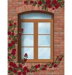 climbing rose around arched window in brick wall vector image vector image