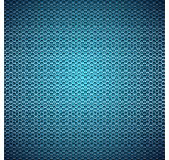 Metal grid background vector image