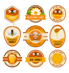 set labels for honey template with place vector image