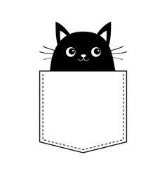 black cat in the pocket moustaches cute cartoon vector image