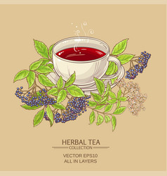 Cup of elderberry tea vector