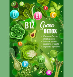 Green diet detox vitamins food nutrition vector