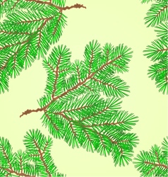 Seamless texture Conifer Spruce branch vector image vector image