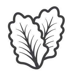 lettuce line icon vegetable and salad leaf vector image vector image