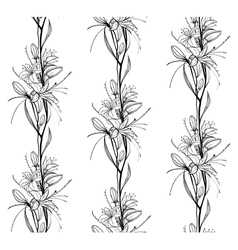 Lily Flowers Outline Seamless Pattern vector image vector image