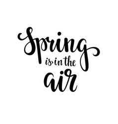 spring is in the air hand drawn calligraphy and vector image vector image