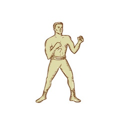 Vintage Boxer Pose Etching vector image vector image
