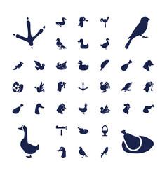 37 bird icons vector
