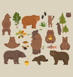 all bear species in one set bears in forest vector image