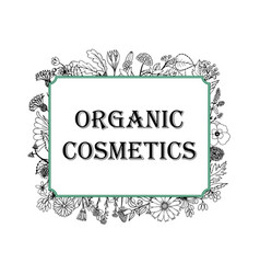 black-and-white for organic cosmetics vector image