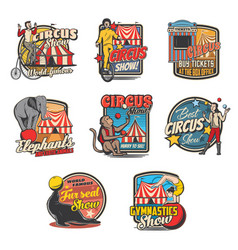 circus tent clown acrobat animal retro icons vector image
