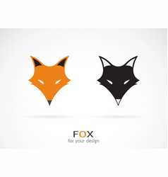 Fox face design on white background wild vector