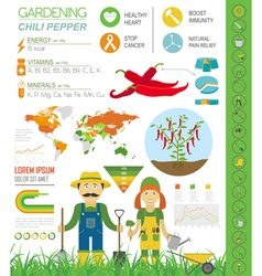 Gardening work farming infographicChili pepper vector