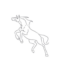 horse running lines vector image