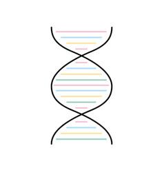 dna molecule isolated icon vector image