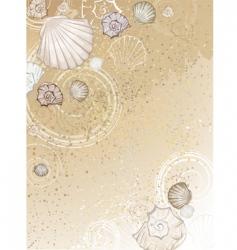 seashells on the sand vector image