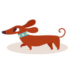 cute brown cartoon dachshund in a blue collar vector image vector image