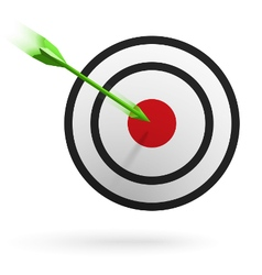 Arrows hitting the center of the target vector image