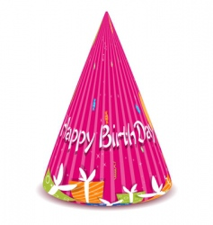 birthday cap vector image