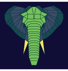 Green and blue low poly elephant vector image