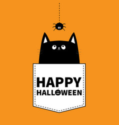happy halloween cat in the pocket hanging spider vector image