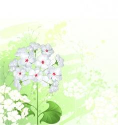 White wild flowers vector