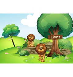 Two lions at the forest with a wooden signboard vector image
