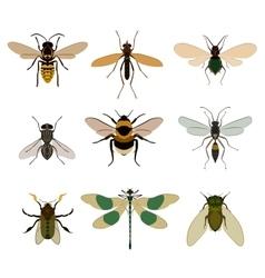 Bug icon set isolated on white vector image