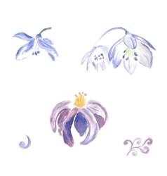 Watercolor violet flowers vector image