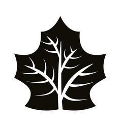 Autum webbed leaf silhouette style icon vector