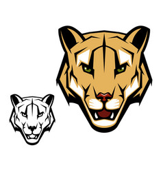 cougar puma or mountain lion animal head mascot vector image