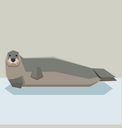 Flat design bearded seal vector