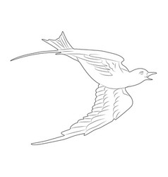 flying white dove hand drawn isolated sketch vector image