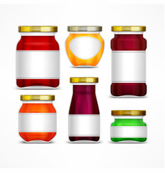 Fruit jam jars with label vector
