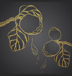 Golden herbs beauty abstract lined art vector