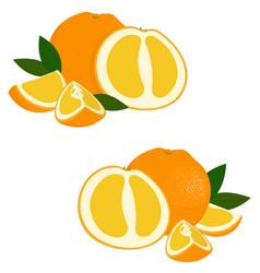 orange fruit set of fresh whole and cut orange vector image