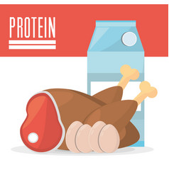 protein product ingredient food vector image