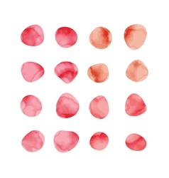 red watercolor spots Stained petals Hand painted vector image