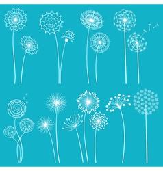 set dandelions vector image