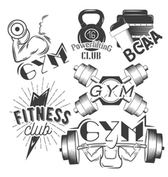 Set of gym labels in retro style Sport and vector